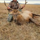 Got my Wyoming trifecta! Its been a good October!