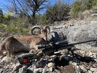 4 days. Countless miles. One Aoudad.