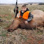 Elk with a .243 - it CAN be done!!